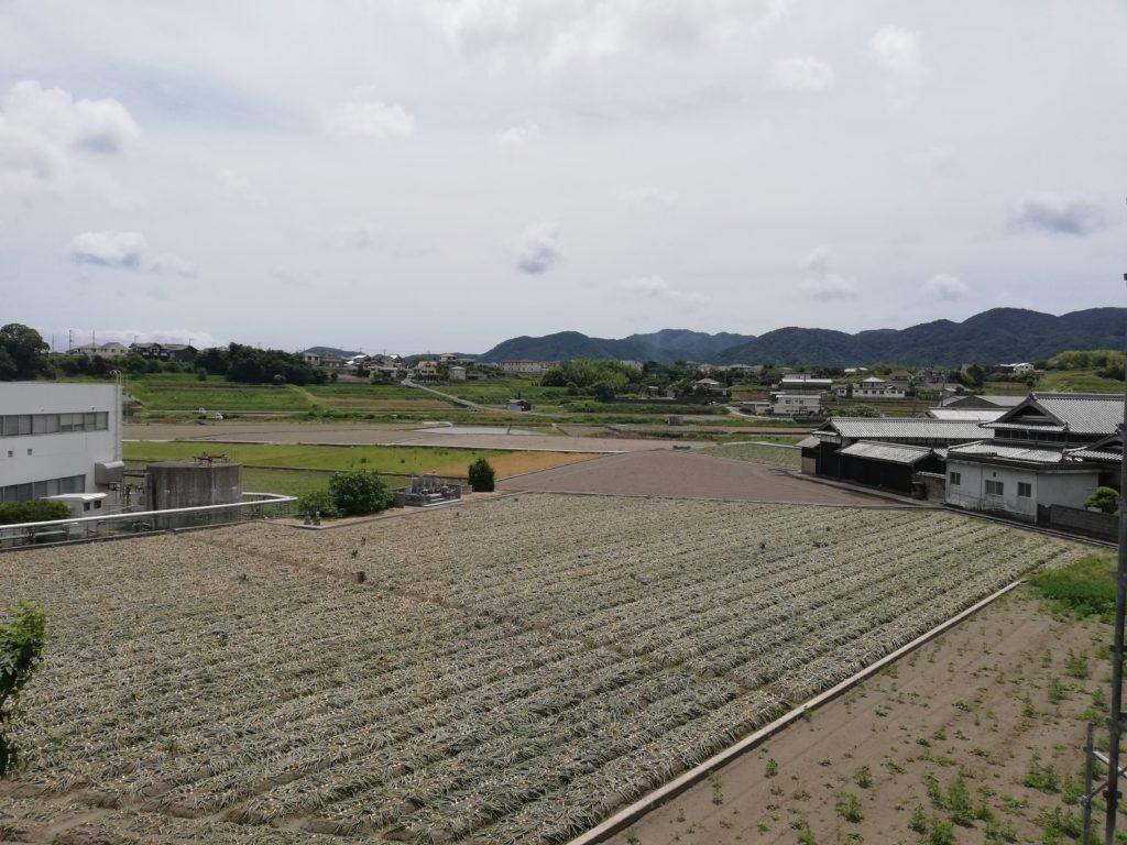 淡路島の風景
